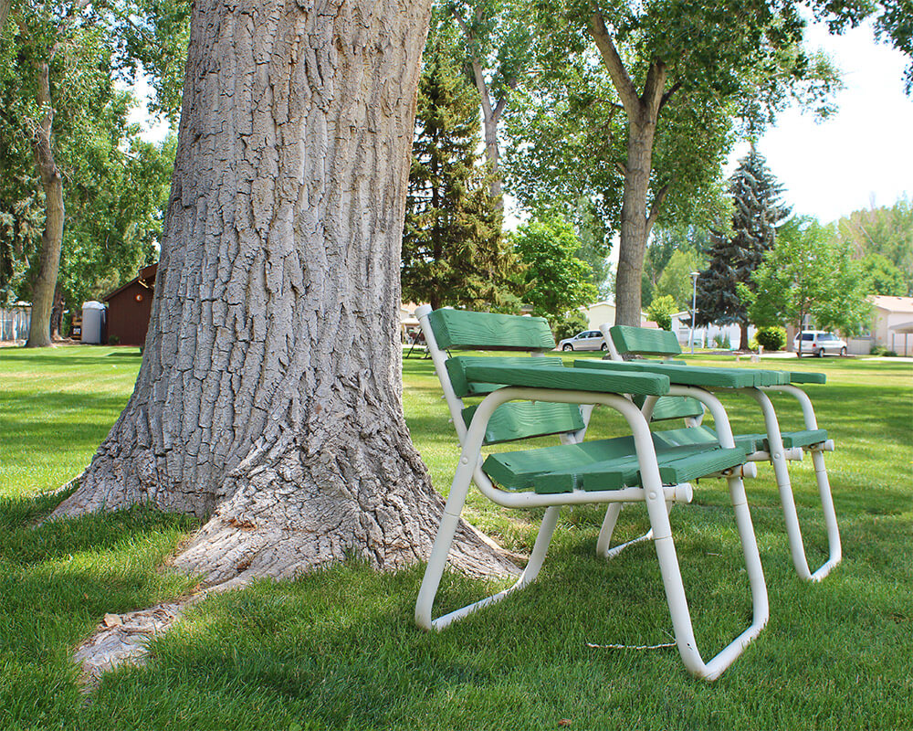 Mature shade trees and benches